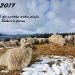 Bakers farm PF 2017