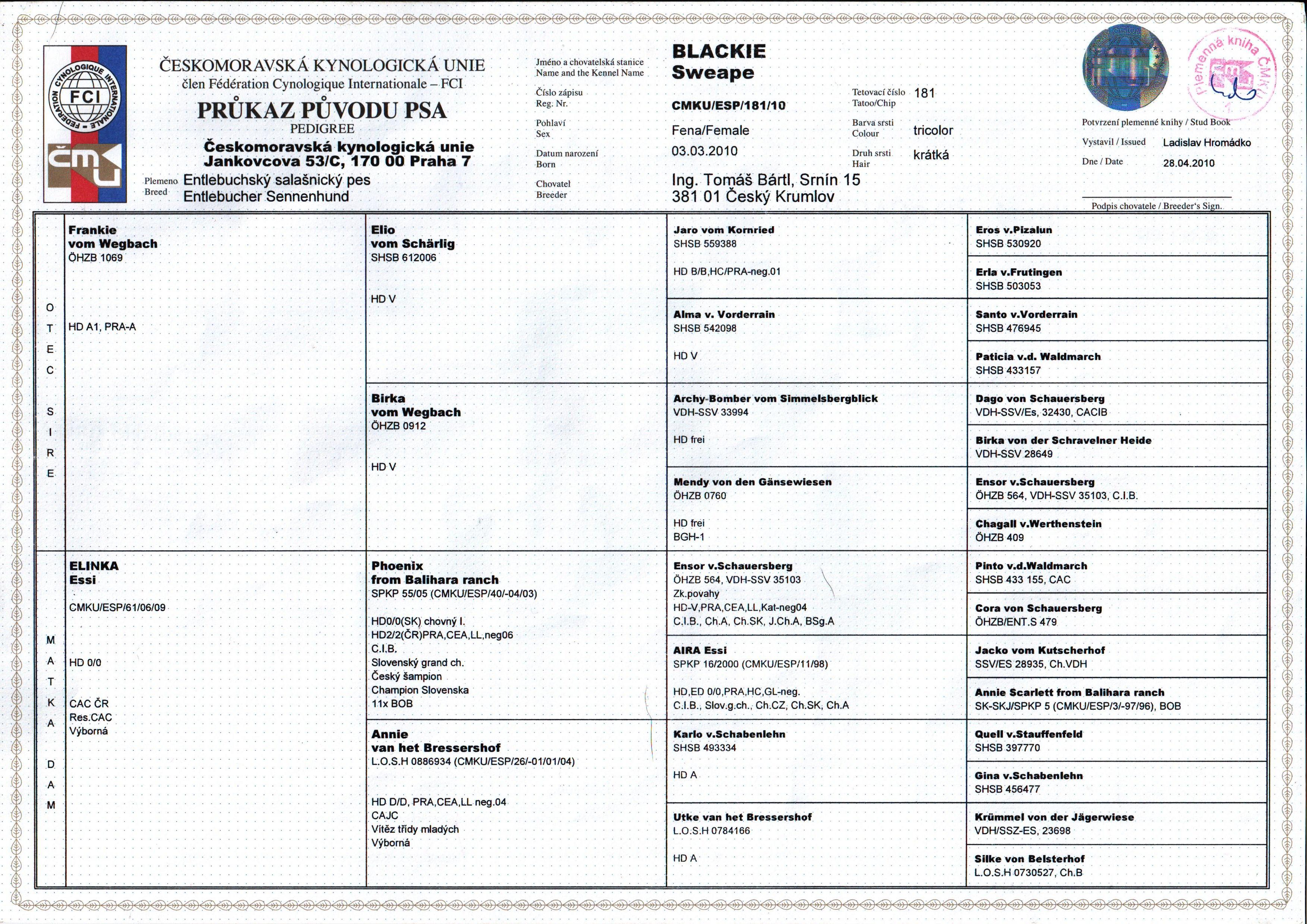 Průkaz původu - entlebušský salašnický pes (Blackie Sweape)